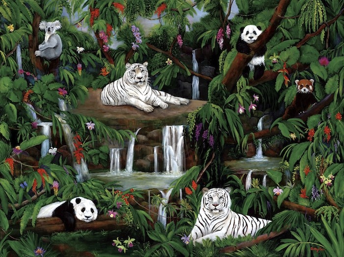 white tigers, koala, pandas rain forest, wildlife, waterfalls, jungle animals