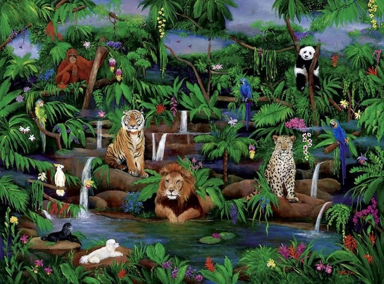 Jungle, wildlife, lion, orangutans, cheetah, poodles, tropical birds